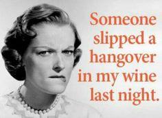 845 Best Wine drinkers humor images in 2018 | Funny memes