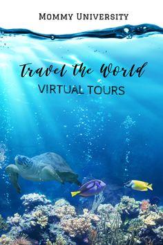 Educational Virtual Tours: Travel the World from Inside Your Home Virtual Museum Tours, Virtual Tour, Virtual Class, Virtual Reality, Houston Zoo, Georgia Aquarium, Virtual Field Trips, Virtual Travel, Air And Space Museum