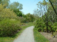 Sentier du Domaine de Maizerets Nature, Sidewalk, Country Roads, Pathways, Landscapes, Walkway, The Great Outdoors, Walkways, Mother Nature