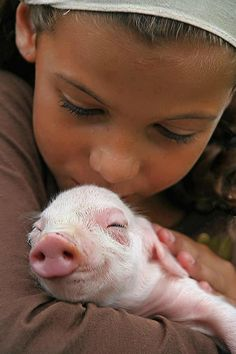 boy and baby pig baby Animals Animals Animals For Kids, Cute Baby Animals, Animals And Pets, Kids And Pets, Farm Animals, This Little Piggy, Little Pigs, Beautiful Creatures, Animals Beautiful