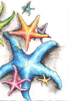 Sea Stars by Kyla-Nichole on DeviantArt Watercolor Sea, Watercolor Animals, Watercolor Paintings, Sea Life Art, Sea Art, Sea Turtle Art, Sea Turtle Painting, Trash Art, Art Drawings