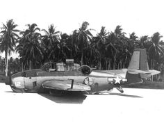 EMERGENCY LANDING ON THE BEACH, WAR IN THE PACIFIC
