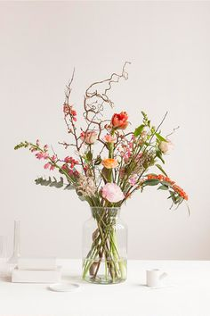 Blumen direkt vom Feld www.de 2019 Blumen direkt vom Feld www.de The post Blumen direkt vom Feld www.de 2019 appeared first on Flowers Decor. Home Flowers, Happy Flowers, Bunch Of Flowers, Fresh Flowers, Beautiful Flowers, Buy Flowers, Art Floral, Deco Floral, Flower Vases
