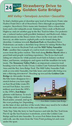 Strawberry Drive to Golden Gate Bridge Golden Gate Bridge, Thesis, Trail, Strawberry, Strawberry Fruit, Strawberries, Strawberry Plant