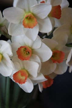 Narcissus, flowers named after Narcissus and are like the one that was left after him.