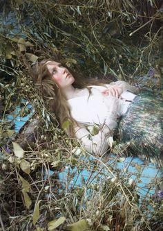 pinkagony:    Steven MeiselSaoirse Ronan, Cult of BeautyVogue US December 2011