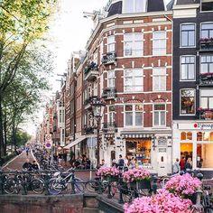 Springtime flowers in Amsterdam   : @framboisejam