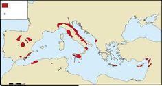 Giacitura e origine dei cristalli gessosi di lapis specularis nell'area mediterranea | Stefano Lugli, Vinicio Manzi, and Rosario Ruggieri - Academia.edu