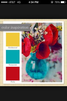 Found my new colors for our home!