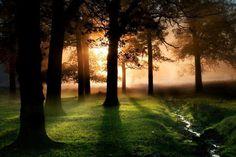 Sunrise in Virginia