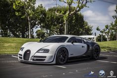 The Veyron Pur Blanc, known to some as the 'Panda',