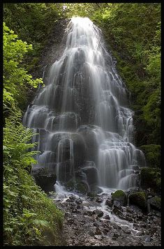 Fairy Falls....In the Columbia Gorge in Oregon!!