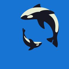 Orca Family Animation on Motion Graphics Served Anim Gif, Gif Animé, Animated Gif, Gif Art, Illustration Inspiration, Illustration Art, Motion Design, Gifs Cute, Calming Cat