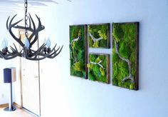 Make moss pictures yourself – great ideas for wall design and wall covering + … – Wanddekoration Interior Design Living Room, Living Room Decor, Bedroom Decor, Living Walls, Sustainable Design, Wall Design, Garden Art, Design Trends, Color Schemes