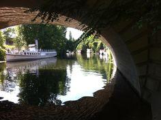 Am Tiergarten