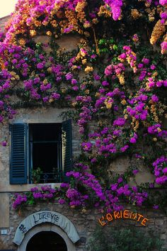 Shop in Sirmione, Lake Garda, Italy   via flickr----yes they have flowers all over at lake garda!