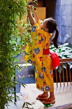 Japanese Star Festival -Tanabata-: making fun paper ornaments and own tanzaku, thin paper strips for writing wishes, to decorate bamboo branches for this festival.