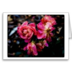 """A blank 7x5 note card featuring the image """"Sad Things"""" by artist and photographer Rodney Keith Richardson. This card can be customized."""