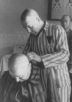 Prisioneiro tendo a cabeça raspada no campo de concentração de Sachsenhausen. Alemanha, 1942.