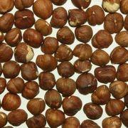 How to Grow Macadamia Nut Trees | eHow