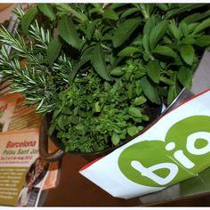 Hablando de la Feria como nos va (como consumidores). #BioCultura 2012 Parsley, Herbs, Get A Life, Herb, Spice