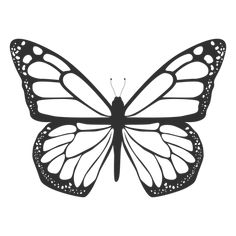 Isolated Butterfly illustration in black. This design shows lots of details in t… Isolated Butterfly illustration in black. This design shows lots of details in the butterfly wings as well. Designed over gray. Monarch Butterfly Tattoo, Butterfly Outline, Butterfly Top, Butterfly Tattoo Designs, Butterfly Painting, Butterfly Wallpaper, Butterfly Design, Butterfly Wings, Simple Butterfly Drawing