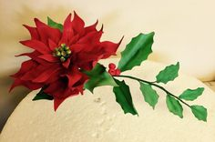 My first gum paste Poinsettia by Daisychain's Cakes