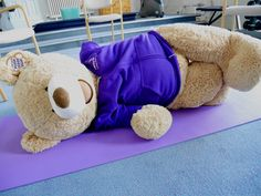 Today the bear has been practicing mindfulness by doing some yoga and stretches in our gym.
