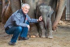 Knies Kinderzoo: Im Zeichen des Elefanten - Spot Magazine Switzerland, Elephant, Animals, Elephants, Kids, Animales, Animaux, Animais, Animal