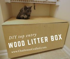 Best Of top Entry Kitty Litter Box