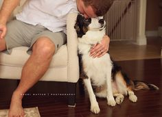 February 2016, Boston Terrier, Families, Dogs, Photography, Animals, Animales, Animaux, Pet Dogs