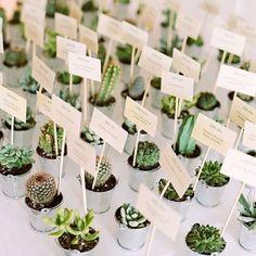 Boho and green wedding decor idea: succulent and cacti escort cards Wedding Bells, Wedding Flowers, Wedding Day, Succulent Wedding Favors, Cactus Wedding, Wedding Quotes, Wedding Reception, Wedding Plants, Wedding Greenery