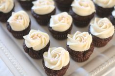 Mini chocolate cupcakes with a vanilla icing rose on top.