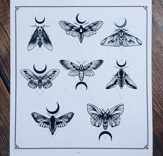 Бабочки, насекомые | 194 фотографии