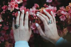hands in the spring, by Tiko Giorgadze   Unsplash