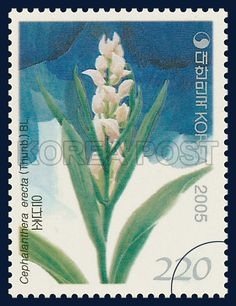 Korean Orchid Series (5th), Cephalanthera erecta (Thunb. ex Murray) Blume, Plants, SteelBlue, Green, 2005 11 11, 한국의 난초 시리즈(다섯 번째 묶음), 2005년 11월 11일, 2465, 은난초, postage 우표