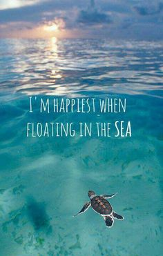 I'm happiest when floating in sea.