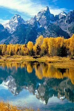 Grand Teton National Park , Rocky Mountains, Northwest Wyoming: - #amazing #awesome #yellow #reflection
