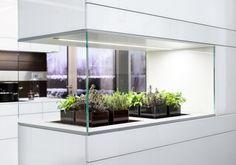 Mini-Garten in der Küche-integriert-Küchenmöbel in Hochglanz-Lack