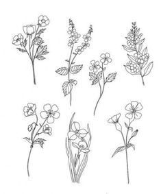 A list of 30 ways to draw flowers - From roses, poppies, tulips, wildflowers, and more. Learn how to draw flowers using simple line drawings. Flower Tattoo Designs, Flower Tattoos, Flower Designs, Small Tattoos, Doodle Drawings, Tattoo Drawings, Tatto Floral, Floral Drawing, Drawing Flowers