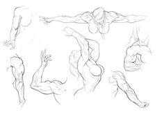 Sketch Dump 2 by ~Bambs79 on deviantART