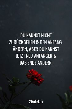 Spruch des Tages: Sprüche und Zitate für jeden Tag You can't go back and change the beginning, but you can start over and change the end now! Sarcastic Quotes, Funny Quotes, Sassy Quotes, Wisdom Quotes, Love Quotes, Couple Quotes, Saying Of The Day, Motivational Quotes, Inspirational Quotes