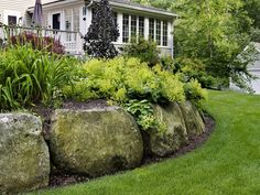 Boulder Retaining Wall with Lady's Mantel Architectural Landscape Design Landscaping With Boulders, Landscaping Retaining Walls, Hillside Landscaping, Landscaping Ideas, Mailbox Landscaping, Lawn And Landscape, Landscape Design, Garden Design, Landscape Stairs