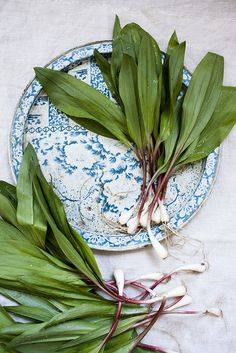 Ramp Pasta | Nicole Franzen by Nicole Franzen Photo, via Flickr
