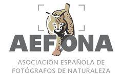 """Concurso AEFONA-José A. Valverde """"El fotógrafo conservacionista del año"""" - http://www.aefona.org/concurso-aefona-jose-a-valverde-el-fotografo-conservacionista-del-ano/"""