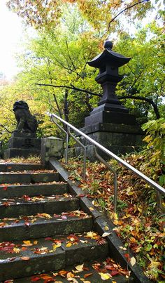 Autumn lantern by steps by Tim Ernst on 500px
