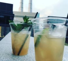 How to best prepare for strolling around historic Savannah Georgia: order a delicious cocktail to go from your hotel. then walk out the door and start exploring! Historic Savannah, Savannah Georgia, Savannah Chat, Walk Out The Door, Explore Travel, Cheers, Exploring, Gypsy, Cocktails