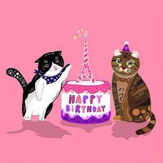 #birthday #cat