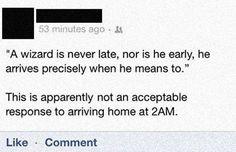 Sorry Wizard Guy