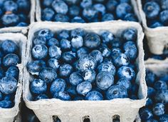 7 Superfoods You Need for a Longer, Healthier Life